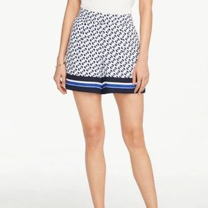 """Ann Taylor White and blue  """"Drapey Short"""" - 4"""